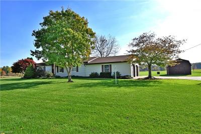 Newton Falls Single Family Home For Sale: 4021 Pritchard Ohltown Rd