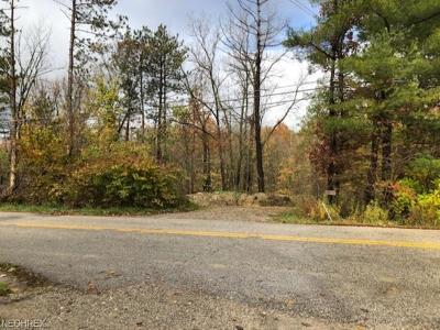 Medina County Residential Lots & Land For Sale: 4767 Kingsbury Rd