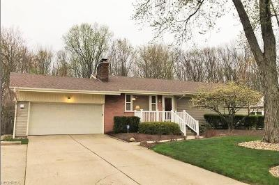 Youngstown Single Family Home For Sale: 4365 Shady Rd