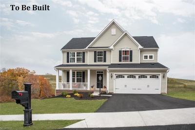 North Ridgeville Single Family Home For Sale: 136 Atlantic Ave