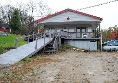 Guernsey County Single Family Home For Sale: 17875 Lashley Rd