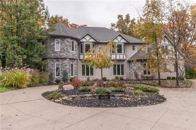 Strongsville Single Family Home For Sale: 14482 Windsor Castle Ln