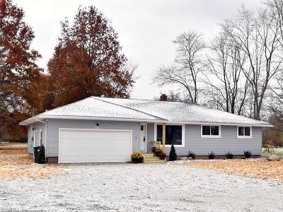 Lorain County Single Family Home For Sale: 23083 Royalton Rd