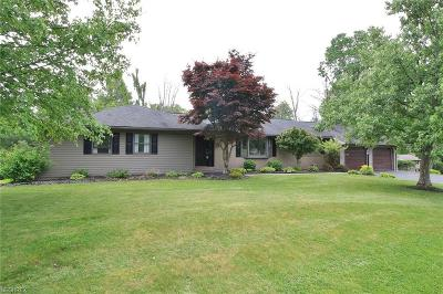 Single Family Home For Sale: 10700 Belle Dr
