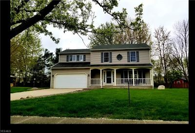 Avon Lake Single Family Home For Sale: 33324 Chatham Dr