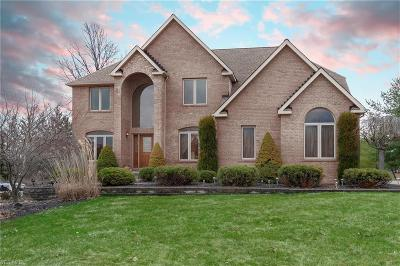 North Royalton Single Family Home For Sale: 10565 Queens Way