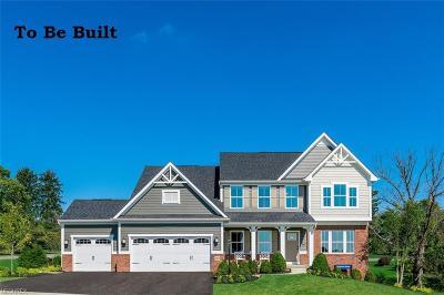 Avon Single Family Home For Sale: 3005 Fairview Dr
