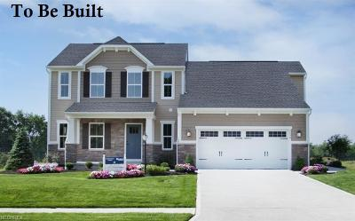 Avon Single Family Home For Sale: 3059 Bluebird Ct
