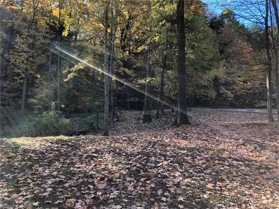 Lake County Residential Lots & Land For Sale: Whitney Ln