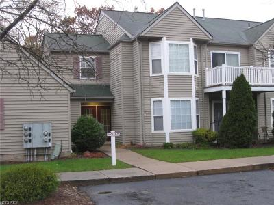 Sagamore Hills Condo/Townhouse For Sale: 1005 Canyon View Rd #D