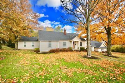 Brecksville, Broadview Heights Single Family Home For Sale: 6903 Daisy Ave