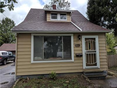Euclid Single Family Home For Sale: 19051 Abby Ave
