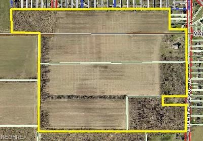 Lorain County Residential Lots & Land For Sale: 10516 Indian Hollow Rd