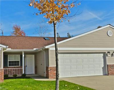 Lake County Condo/Townhouse For Sale: 756 North Creek Dr