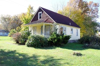Lorain County Single Family Home For Sale: 3602 Dayton Ave