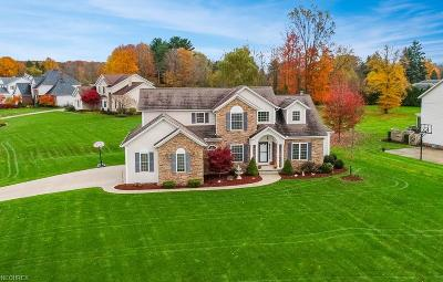 Cuyahoga County Single Family Home For Sale: 7135 Witchhazel Ln