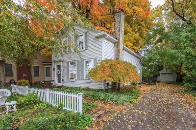 Painesville Single Family Home For Sale: 66 West Washington St