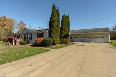 Wadsworth Single Family Home For Sale: 10037 Homestead Rd