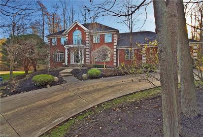 Cuyahoga County Single Family Home For Sale: 784 Village Cir