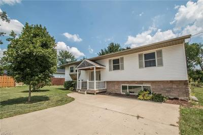 Hinckley OH Single Family Home For Sale: $175,000