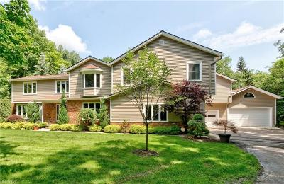 Geauga County Single Family Home For Sale: 9590 Stafford Rd