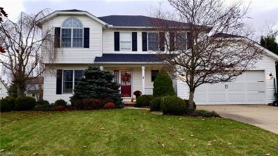 Medina OH Single Family Home For Sale: $259,900