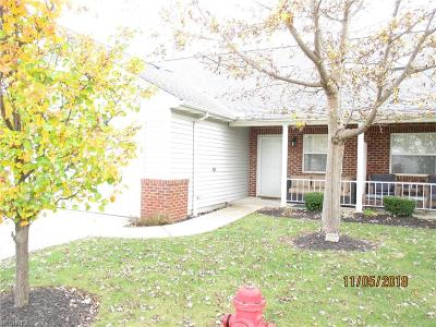Lake County Condo/Townhouse For Sale: 675 North Creek Dr