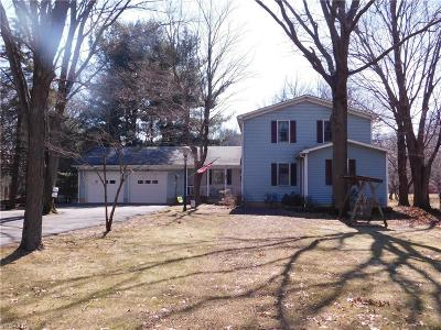 North Ridgeville Single Family Home For Sale: 36777 Center Ridge Rd