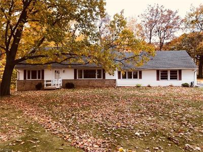 Wickliffe Single Family Home For Sale: 28814 Johnson Dr