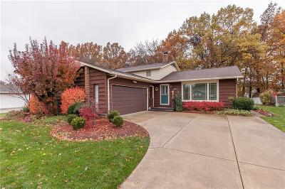 Strongsville Single Family Home For Sale: 8650 Courtland Dr