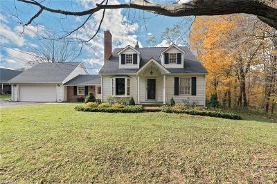 Geauga County Single Family Home For Sale: 6134 Dewey Rd