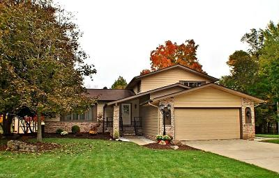 Broadview Heights Single Family Home For Sale: 8055 West Ridge Dr