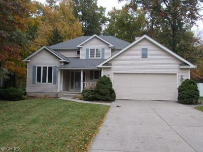 Lorain County Single Family Home For Sale: 4657 Queen Anne Ave