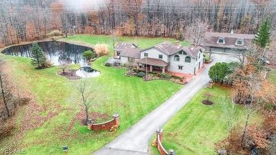 Geauga County Single Family Home For Sale: 14610 Westwood Dr