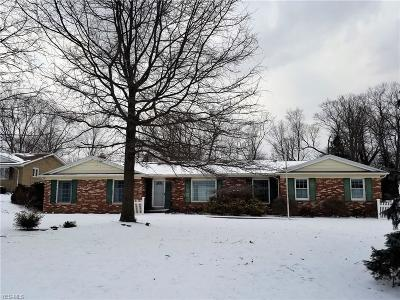Brecksville Single Family Home For Sale: 9255 Whitewood Rd