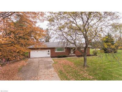 Brecksville Single Family Home For Sale: 4311 Oakes Rd