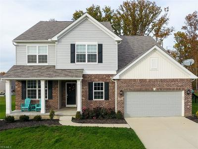 Strongsville Single Family Home For Sale: 20852 North Greystone Dr
