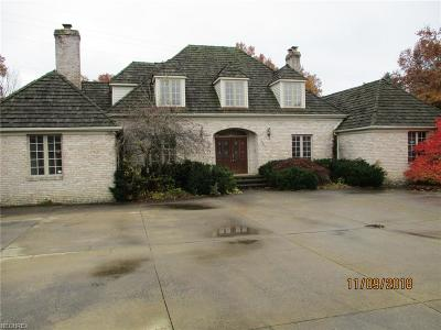 Lorain County Single Family Home For Sale: 4341 Linda Dr