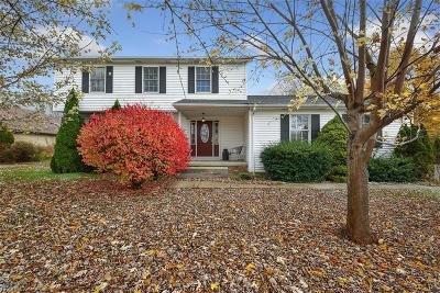 Geauga County Single Family Home For Sale: 5149 Chillicothe Rd