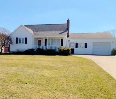 Struthers Single Family Home For Sale: 384 Geneva Ave