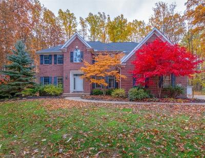 Lake County Single Family Home For Sale: 13506 Shirley Dr