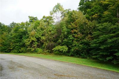 Geauga County Residential Lots & Land For Sale: Windy Lakes Cir