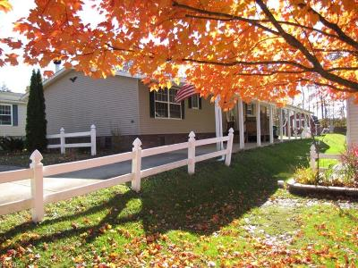 Geauga County Single Family Home For Sale: 74 Cardinal Dr