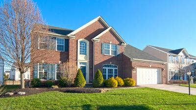 Single Family Home For Sale: 102 Stonewater Ct