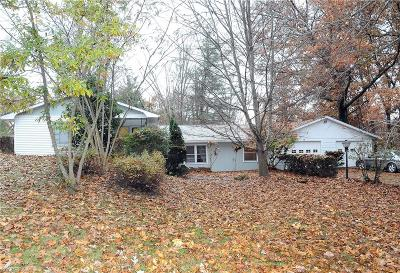 Muskingum County, Perry County, Guernsey County, Morgan County Single Family Home For Sale: 9990 East Pike