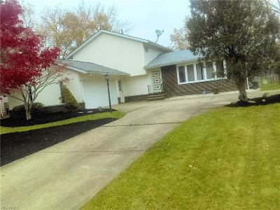 Brunswick Single Family Home For Sale: 385 Delaware Dr