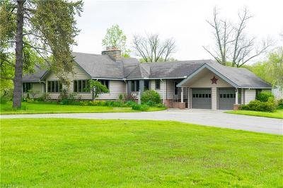 Geauga County Single Family Home For Sale: 15113 Munn Rd