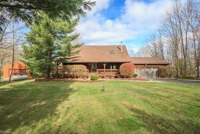 Geauga County Single Family Home For Sale: 11060 Clark Rd