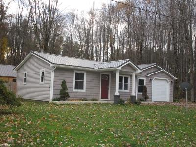 Ashtabula County Single Family Home For Sale: 6866 South Blvd