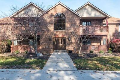 Cuyahoga County Condo/Townhouse For Sale: 8611 Scenicview Dr #M102